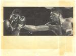 Boxing Memorabilia #4